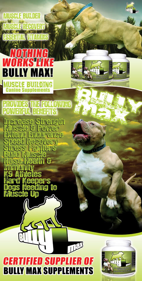 Bully max supplements